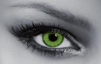 Queens Trilogy Dark Green
